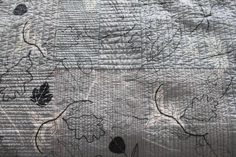 aerial texture carolyn friedlander